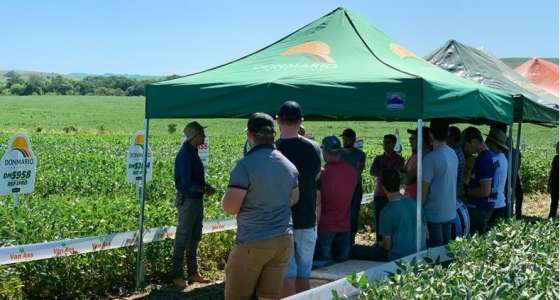 Van Ass sementes participa de Dia de Campo da Multirural