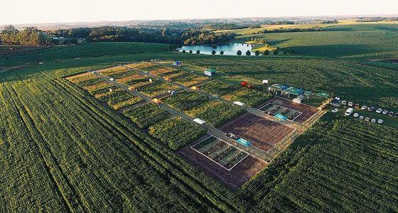 Encontro Tecnológico Van Ass Sementes: 50 anos de história e inovações para o produtor rural