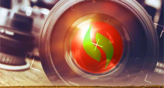 Concurso Fotográfico Van Ass Sementes divulga vencedores