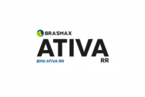 Brasmax Ativa RR