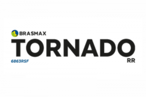 Brasmax Tornado RR