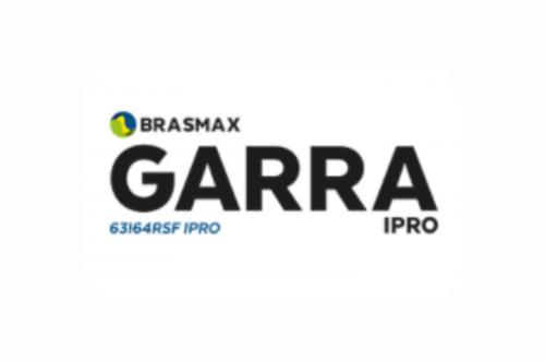 Brasmax Garra IPRO