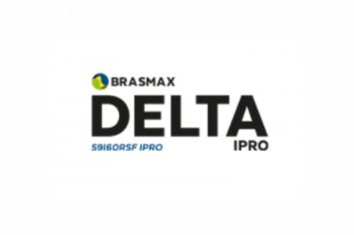 Brasmax Delta IPRO
