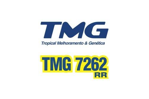 TMG 7262 RR