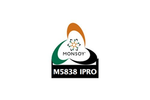 Monsoy M5838 IPRO