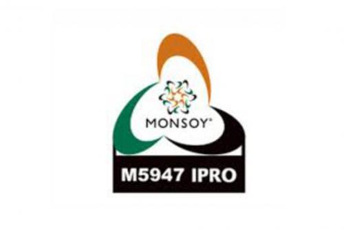 Monsoy M5947 IPRO