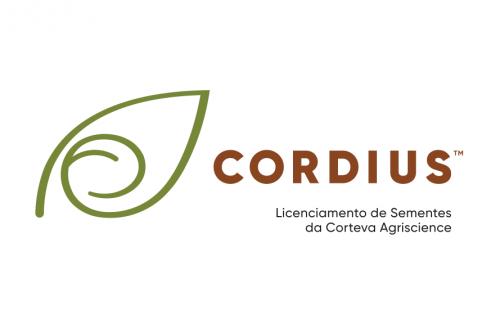 Cordius C2570 RR