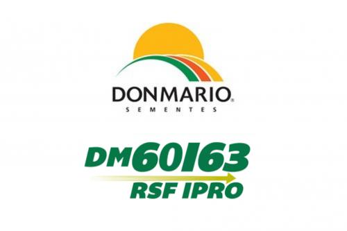 DM 60i63 IPRO