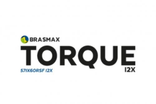 Brasmax Torque i2X